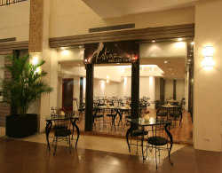 Artina Gallery Cafe